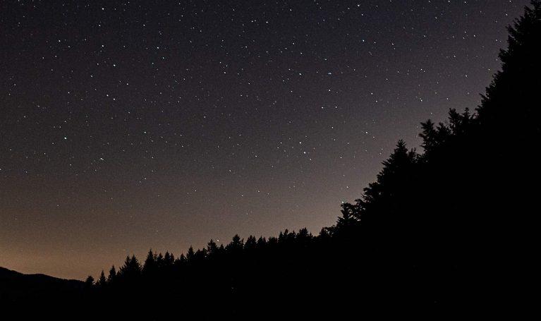 Mystik des Schwarzwaldes